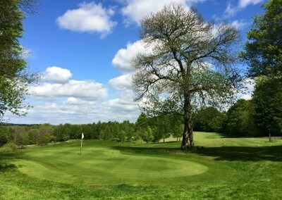 Chiddingfold Golf Course